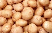 Potato farmers in EAC get assurance of market
