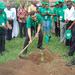 Kabarole district launches tree planting Project