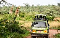 The ultimate game drive safari in Murchison Falls National Park