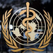 WHO stresses need to find source of coronavirus