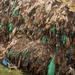 NEMA urges public to say no to plastic bags
