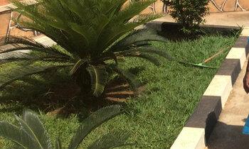 Gardenedges 350x210