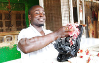 Polythene bags a health hazard