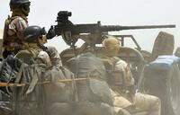 Niger army ''kills 15 Boko Haram militants''