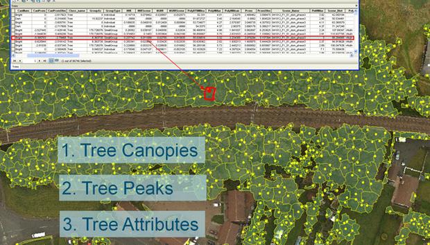 image-6-aerial-survey-tree-database-with-model-data-3