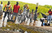 Fishing villages suffer as fish catch drops, industries crash