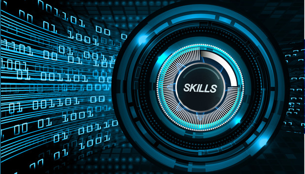 How to (really) evaluate a developer's skillset