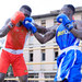 National boxing team takes shape