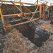 Mexico earthquake unearths ancient temple