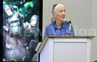 Jane Goodall embraces modern technology to save planet