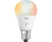 lightifybulb100687354orig