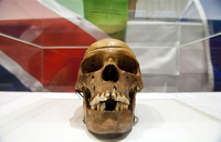 Germany to return human remains from Namibian genocide