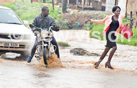How Banda gangs rob during floods