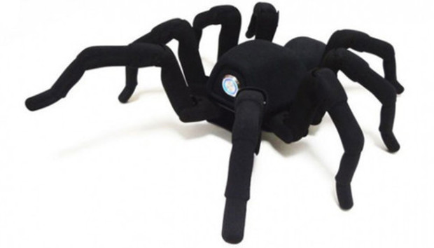 spider100045254large500