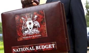 Budget2 703 422 350x210