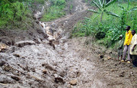 Landslide victims cry for relocation