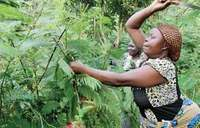 Mukuwa makes dreams come true for Mbale's humble women