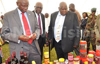 Museveni calls for increased honey production
