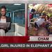 Around Uganda: School girl injured in elephant attack