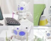 rapirorobot100043665orig500