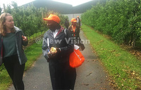 Ugandan farmers tour dairy, piggery, fruit farms in Elshof