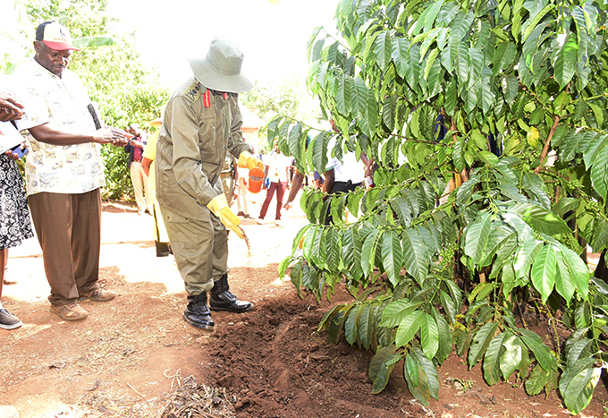 resident useveni launched a  brand of ukulu fertilisers that are manufactured in ororo  hoto