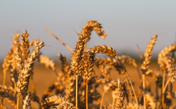 UBS boutique launches commodity tracker fund