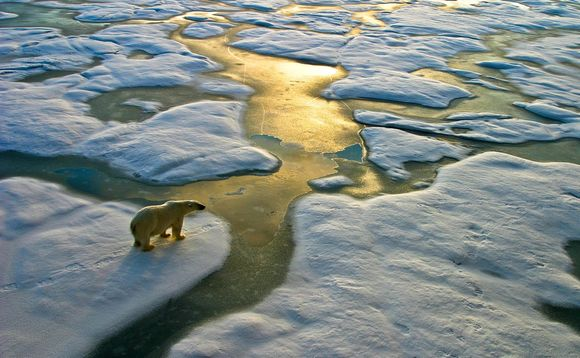 Greater efforts to combat climate change