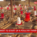 Do you want to start up a poultry farm?
