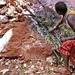Karamoja mineral airborne survey delayed
