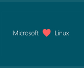 Call me crazy, but Windows 11 could run on Linux