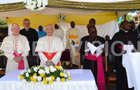 Be zealous promoters of peace, priests told