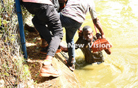 Thief-pursuing policeman saved from drowning