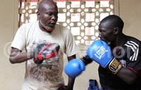 Intermediate Boxing Championship on