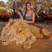US TV hunter draws scorn over South Africa lion kill