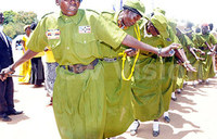 West Nile marks centenary