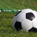 FUFA Big League: Proline return to action