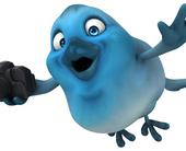 twitter-bird-camera