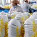 Indonesia confirms first coronavirus cases