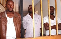 Three jailed over illegal possession of firearms