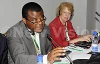 Uganda, Rwanda, DRC join to protect Virunga Forest Park