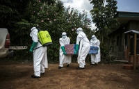 Ebola death toll rises to 75 in DR Congo