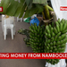 Ugandans are harvesting money from Namboole