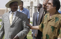 Businessman jailed for forging President''s signature