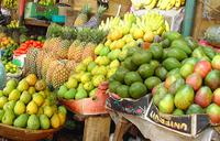 Uganda to host conference on food safety