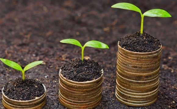 Five reasons to make a dedicated allocation to green bonds