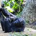 Entebbe''s Zakayo turns 50