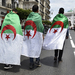 Algeria's July election date implausible
