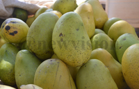 Nourish your skin with mangoes
