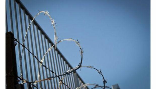fence-540x334
